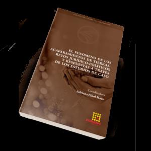 El fenómeno de los acaparamientos de tierras: retos jurídico-políticos y respuestas a través de los estudios de caso